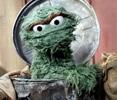 homeless trashcan muppet